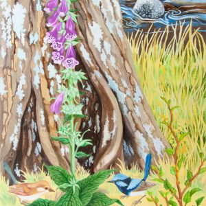 Foxglove and Blue Wrens by Geraldine Hum