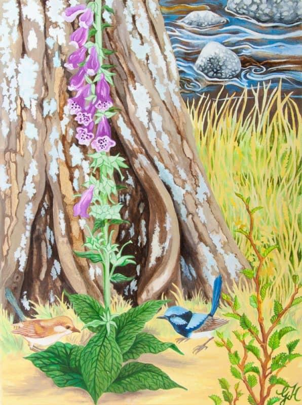 Foxglove and Blue Wrens by Geraldine Hum