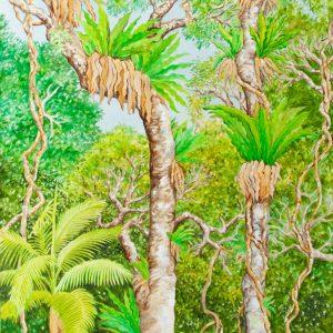 Nightcap Rainforest, Upper Canopy by Geraldine Hum