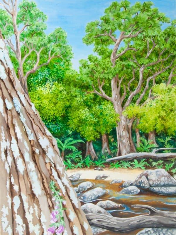 Tasmanian Myrtle Forest on Upper Esk River by Geraldine Hum
