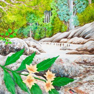 Tasmanian Sassafras - Myrtle Forest by Geraldine Hum