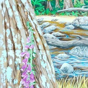 Tasmanian Myrtle Forest Diptych by Geraldine Hum
