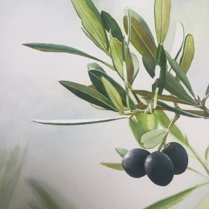 The Olive branch by PJ Smith, Watercolour on 300gsm Arches Paper