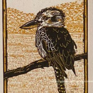 Kookaburra by Mellissa Read-Devine