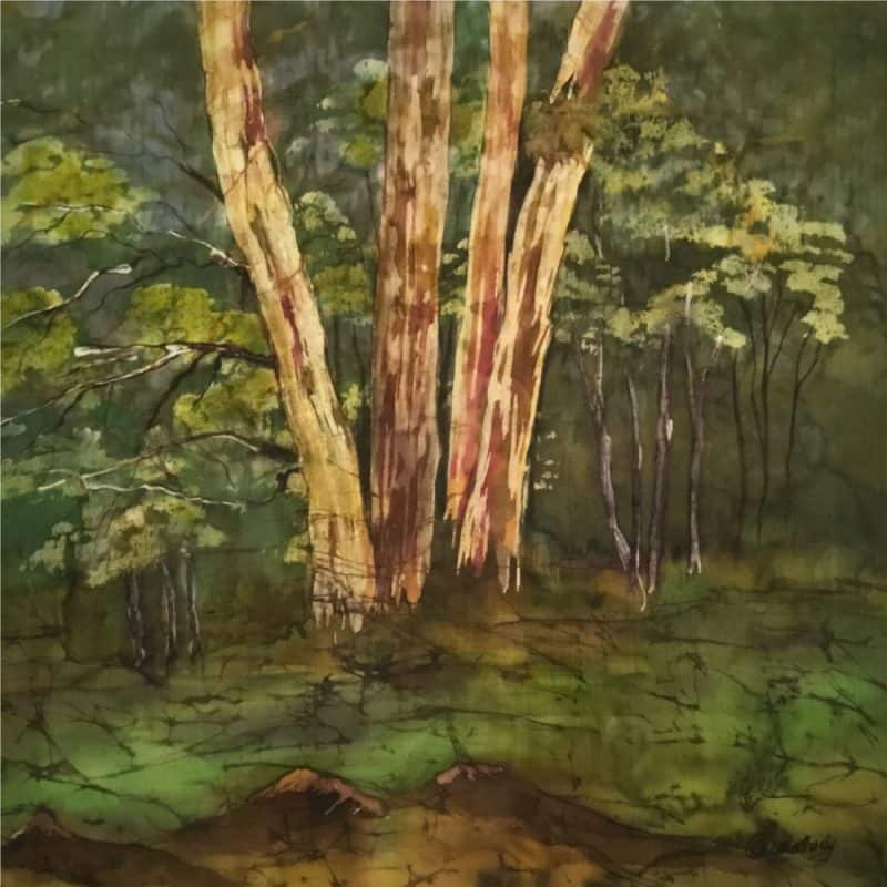 Forest Mood III by Carole Osmotherly