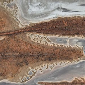 Crustaceans by Andrew Vukosav