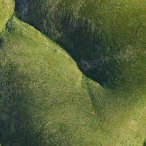 Recumbent Nude by Andrew Vukosav